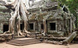 gall_cambodia_10