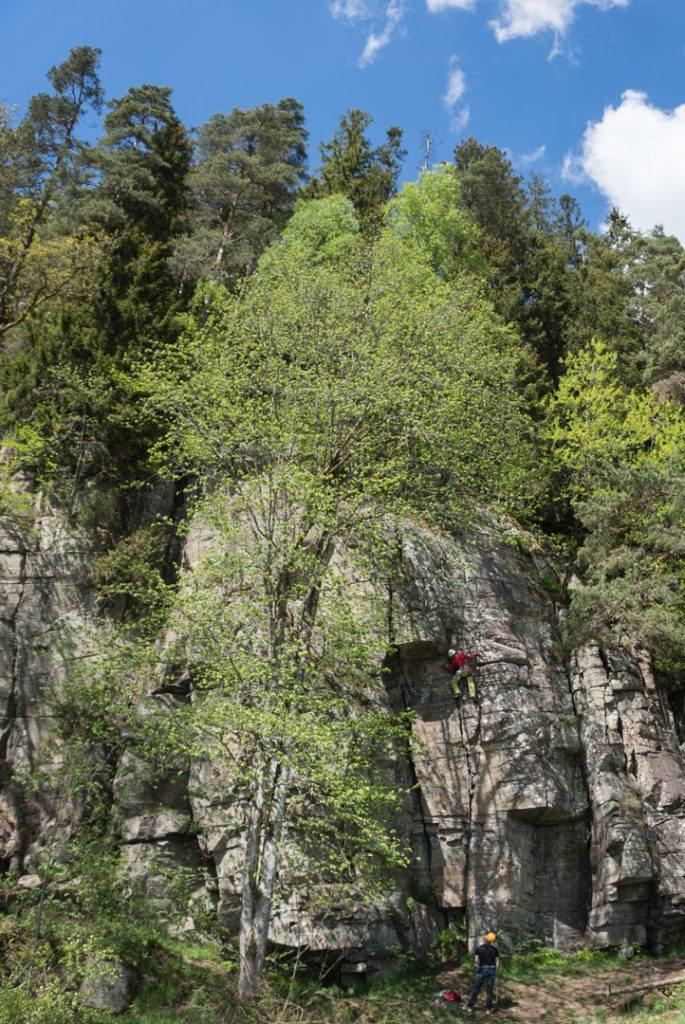 """Jeg har primært fokuseret min træning på klipperuter hvor man selv skal sætte friends eller kiler, men jeg har også været glad for at klatre boltrede ruter, hvor jeg her bedre kan fokusere på teknikken uden at skulle koncentrere mig om sikringsmuligheder. Her klatrer jeg en 15 m rute på eget grej som hedder """"Vino Tinto"""" – Grad 6. Gamla Berget, Seglora, Gøteborg."""